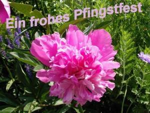 TrioB XL Pfingsttanz